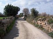 Cami De Foravila